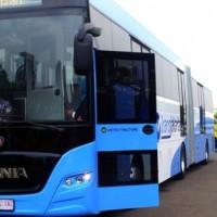 Lowongan : Bus TransJakarta Butuh 6 ribu Sopir dan Kernet...Nih Dia Saratnya... Buruan....!!!